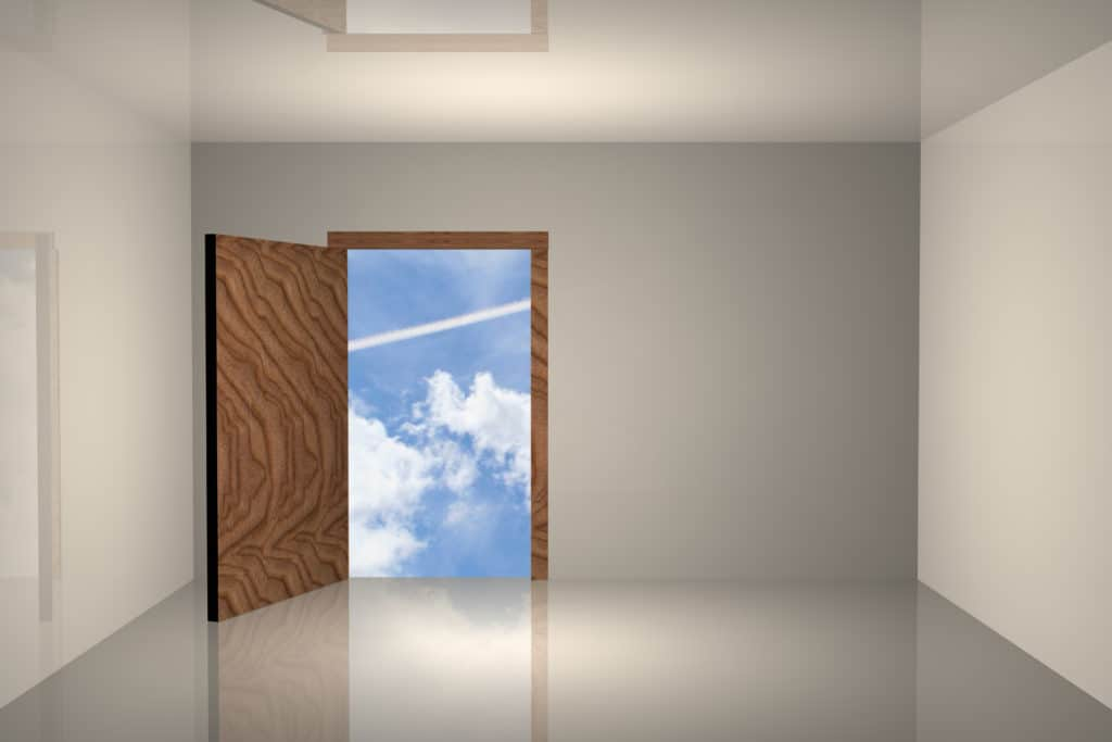 Entrance Door Choices